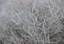 Мороз усилится