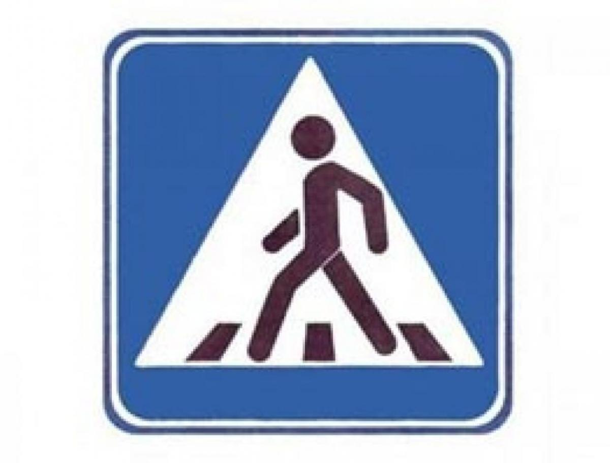 Профилактическое мероприятие «Пешеход»