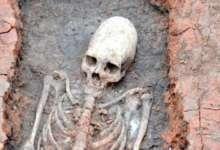 На «Аркаиме» нашли скелет инопланетянина
