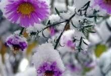 Синоптики обещают в выходные первый снег на Южном Урале.