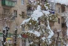 Январь новому году начало, а зиме середина