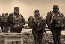 День в истории России. Освобождение Братиславы