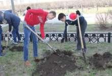 Карталинские железнодорожники посадят деревья