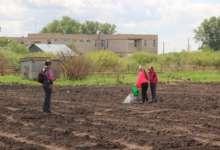 Открытие школьного огорода намечено на 2 июня