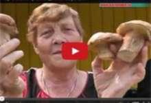 Карталинские грибники делятся секретами