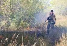 В Карталах огнеборцы тушат траву в парке