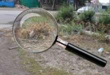 «Под лупу «Карталинки» попал мусор в Полтавке