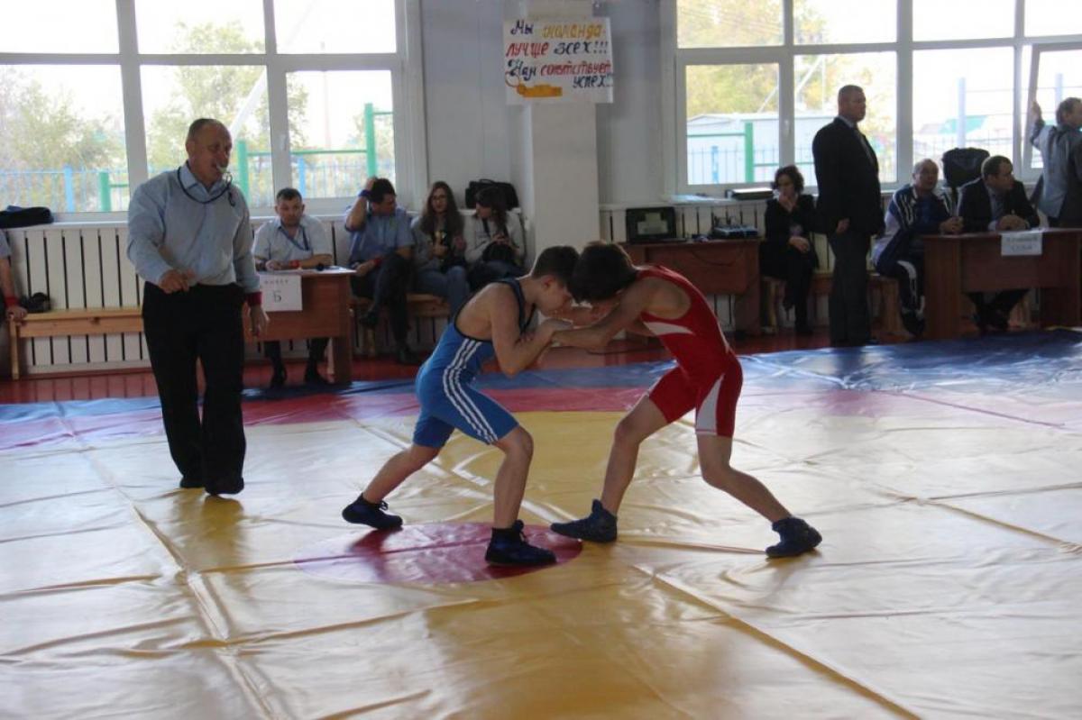 Борцы вышли на ринг