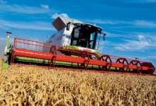Карталинские аграрии готовят документы на получение субсидии