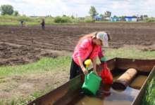Карталинский школьный огород готов к посадке овощей