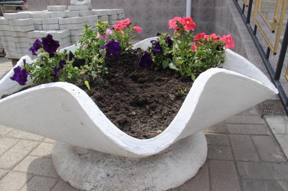 В Карталах участились случаи кражи цветов