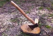 В карталинских дворах выпиливают деревья