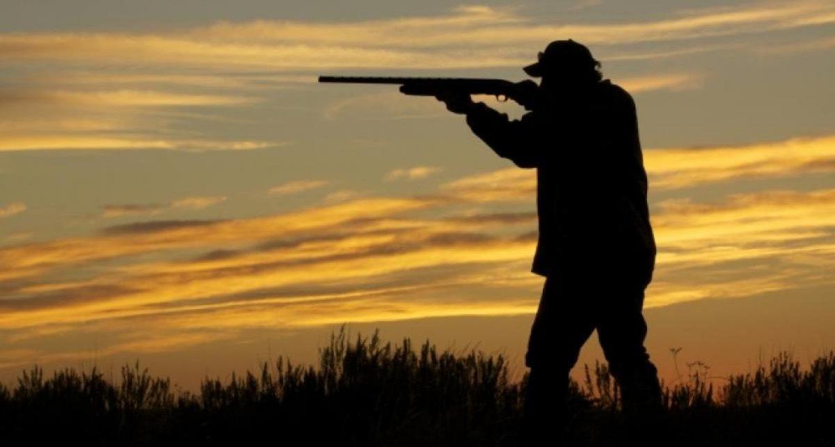 Охота на лося запрещена новости Украины /