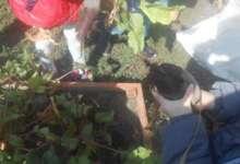 Собрали урожай для карталинских дошколят