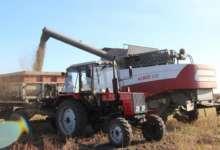 В Карталинском районе урожай убирают