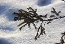 Морозы в Карталинском районе идут на спад
