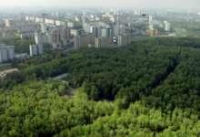 Для Челябинска создадут «зеленый щит»