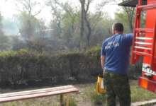 В Карталах пожар случился в парке