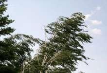Погоду продолжает «штормить»