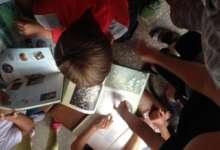 Карталинцы изучают творчество Носова, играя