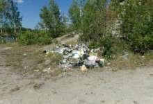 Карталинка инициировала уборку на пляже