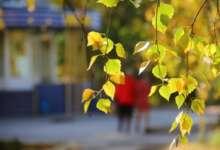 Карталинские метеорологи обещают похолодание