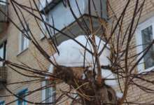 В Карталинском районе возможны снег и метели