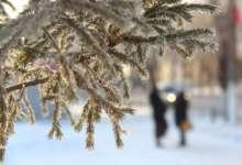 Мороз не беда, если знать, как себя защитить