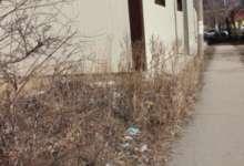 В Карталах мусора еще очень много