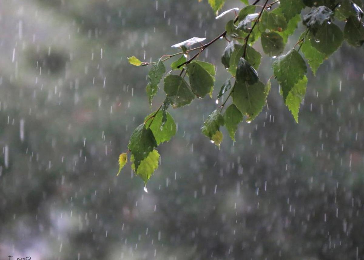В Карталинском районе пройдут дожди