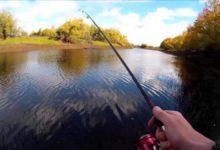 Рыбку из карталинских рек нужно есть с осторожностью