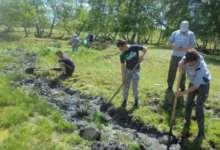 Жители Карталинского района растят в лесу дубраву