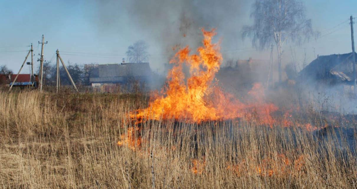 Огнеборцы второй день травяной пожар тушат.