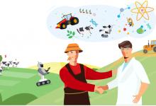 У фермеров Челябинской области появилась возможность доставлять свою продукцию через платформу «Доставка Яндекс Go»