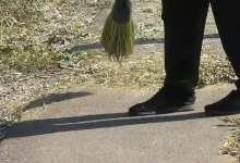 В Полтавке траву косят